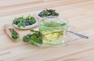 Chás de ervas medicinais: como preparar