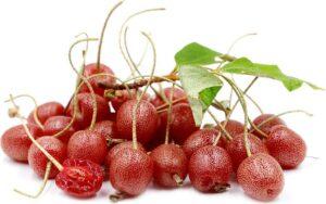 Frutas da Ásia: Goumi